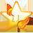 a website development site for 11 star fire that runs digital graphic design and digital marketing